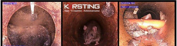 kloakservice tv inspektion strømpeforing 5