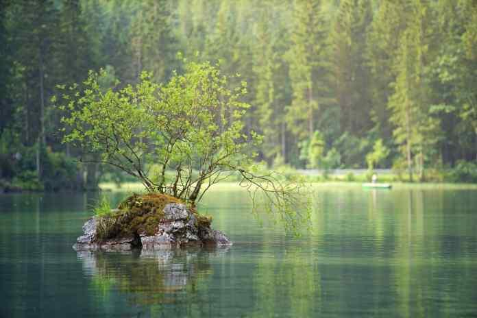 waters, nature, lake