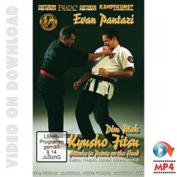 download-dvd-kyusho-jitsu-points-on-the-head