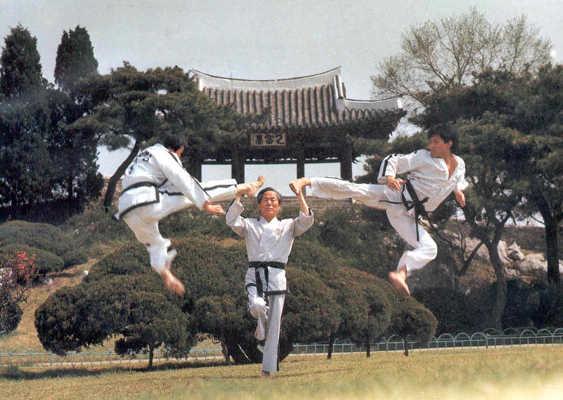 Kyusho of TKD