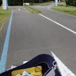 單車只可進入單車徑。單車徑足夠闊,通行很舒適。