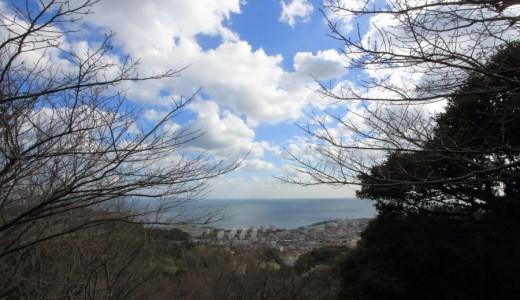 賞花賞海的山丘 - 白野江植物公園
