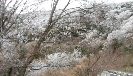 冬天九州自駕遊 – 要不要雪胎?