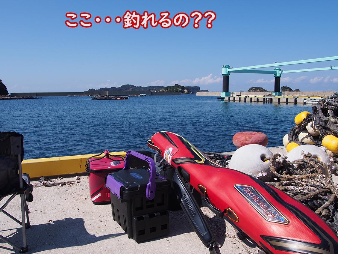彷徨う釣師、博多にわ男。何で・・何でこんなに・・・。