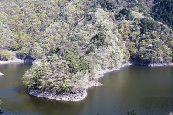 小河内神社 景色
