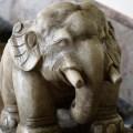 築地本願寺 象