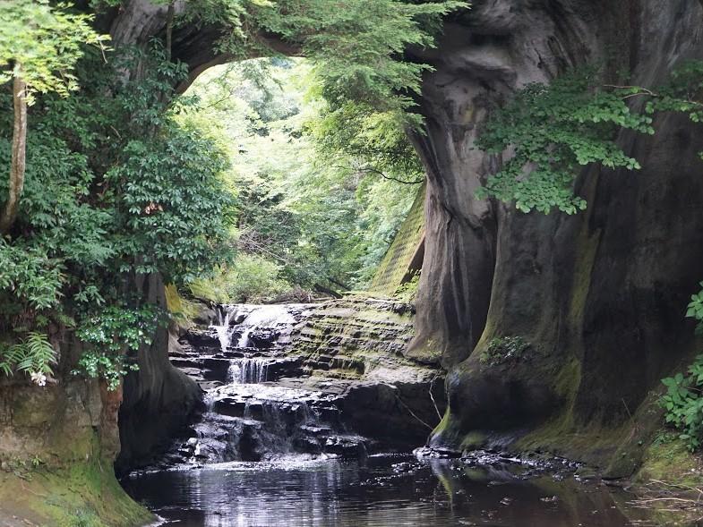 濃溝の滝(亀岩の洞窟)~千葉県君津市にあるジブリのような世界