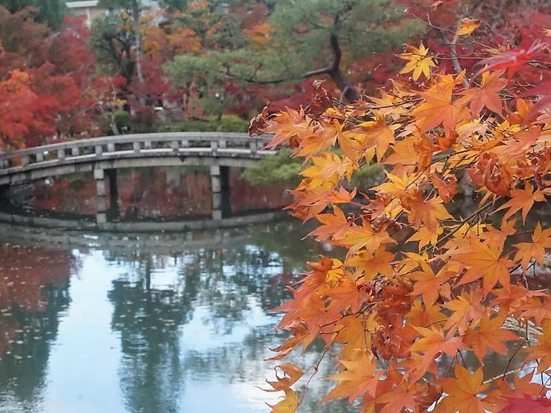 京都 禅林寺 永観堂 紅葉