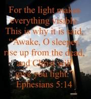 rise-up-o-sleeper