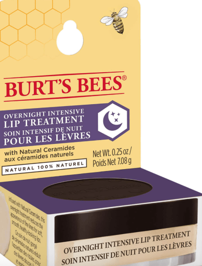 burts bees overnight lip treatment