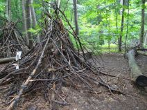 Les parents volontaires ramassent des branches d'arbres pour que les enfants puissent jouer dans la forêt.JPG