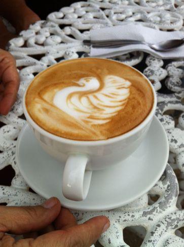 Café salvadorien (photo Lucie Lacombe).JPG