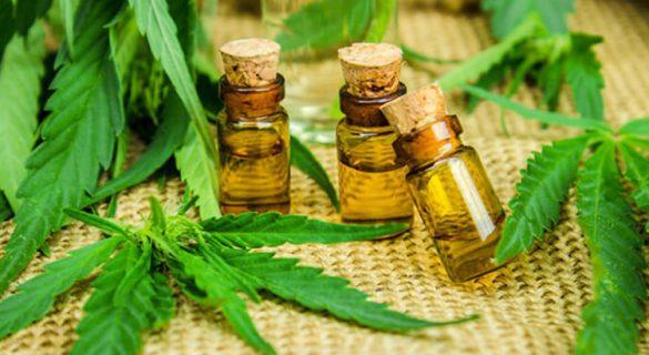 De l'huile de cannabis.