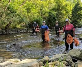 Des bénévoles dans la rivière.