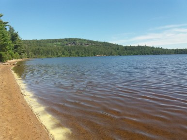 Plage sur les rives d'un lac du parc Algonquin