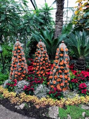 Arrangement floral des Fêtes aux Allan Gardens. (Photo: Nathalie Prézeau)