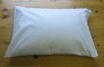 buckwheat travel neck pillow online