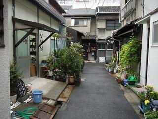 111015sukima06.jpg