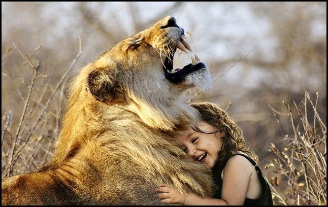bonheur mot lion animaux
