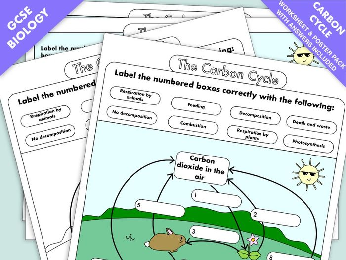 the carbon cycle diagram gcse 1966 corvette wiring worksheets and a3 wall posters updated by beckystoke teaching resources tes