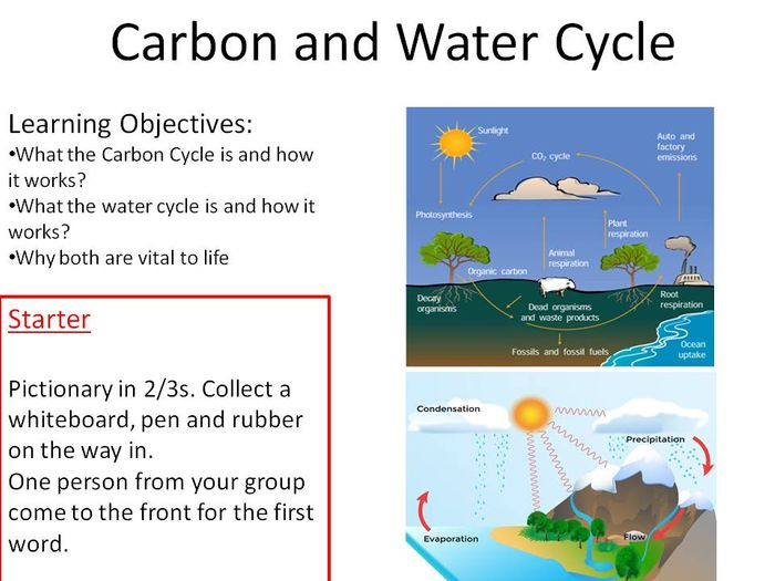 the carbon cycle diagram gcse single phase double capacitor induction motor wiring and water new bio 9 1 by jeffsstar science