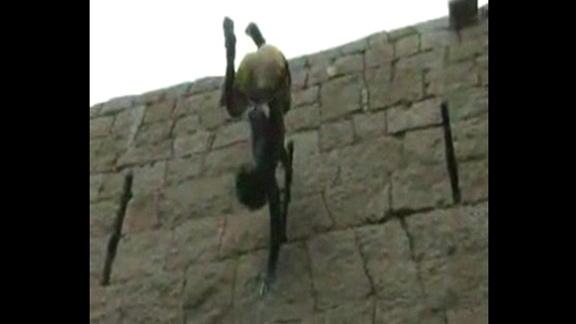 Jyothi Raj @ Yahoo! Video