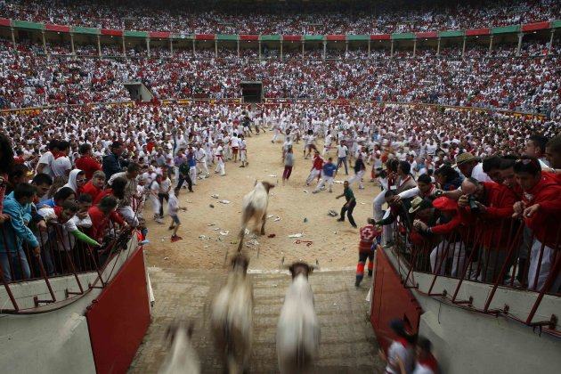 Steers enter the bullring during the second running of the bulls of the San Fermin festival in Pamplona