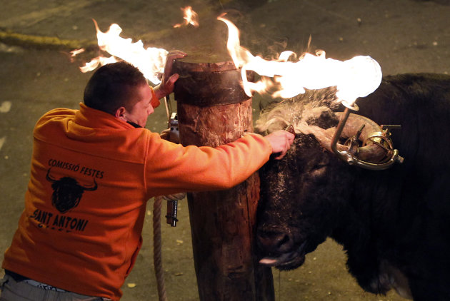 A reveler releases a bull with flaming horns during a festival in honor of Saint Anthony, the patron saint of animals, in the streets of Gilet, a town near Valencia, Spain, in the early hours of  Sund