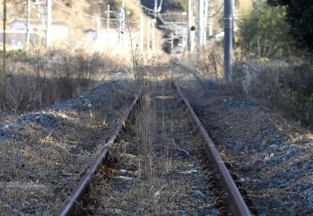 Weeds are seen on the tracks …