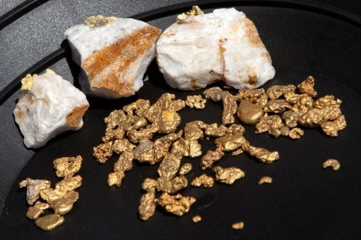 """Gold nuggets on display on April 29, 2011 in Jamestown, California. Solid gold can be deposited in Earth's crust """"almost instantaneously"""" during earthquakes, said a study published in the journal Nature Geoscience on Sunday"""