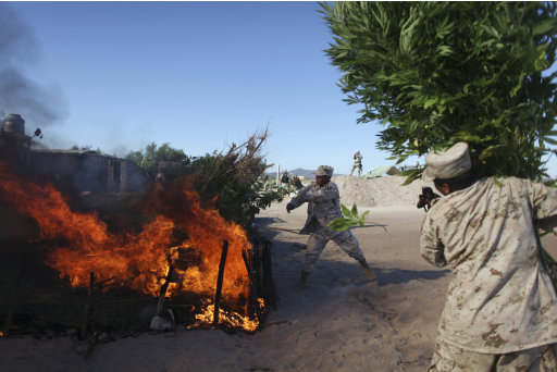 Army personnel burn marijuana plants at a plantation discovered near San Quintin, Baja California state, Mexico, Friday, July 15, 2011. Soldiers have found the largest marijuana plantation ever detected in Mexico, a huge field covering almost 300 acres (120 hectares), covered by shaded netting, the Defense Department said Thursday. The plantation is four times larger than the previous record discovery by authorities at a ranch in northern Chihuahua state in 1984.   (AP Photo/Alexandre Meneghini)