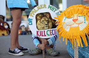 Girl holds sign at the doorway of Bloomington's River Bluff Dental clinic in protest against the killing of a famous lion in Zimbabwe