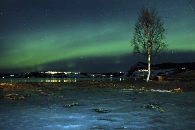 The aurora borealis, or Northern Lights, are seen near the city of Trondheim, Norway Tuesday Jan. 23, 2012. Stargazers were out in force in northern Europe on Tuesday, hoping to be awed by a spectacul