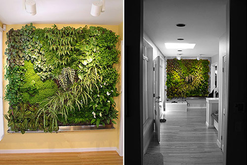 Cool home designs that embrace nature