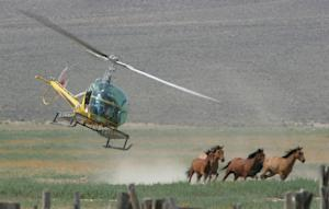 FILE - In this July 13, 2009 file photo, a helicopter…