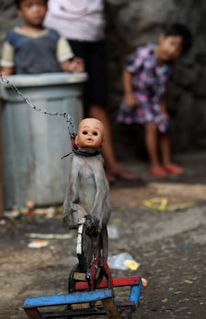 In this photo taken on Thursday, Oct. 24, 2013, a street…