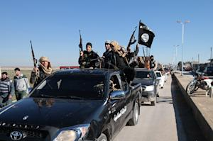 Islamic State extremists