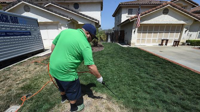 Cy Bodden from the San Diego company LawnLift sprays their Grass Paint product onto a lawn on May 12, 2015 during a severe drought in San Diego and California
