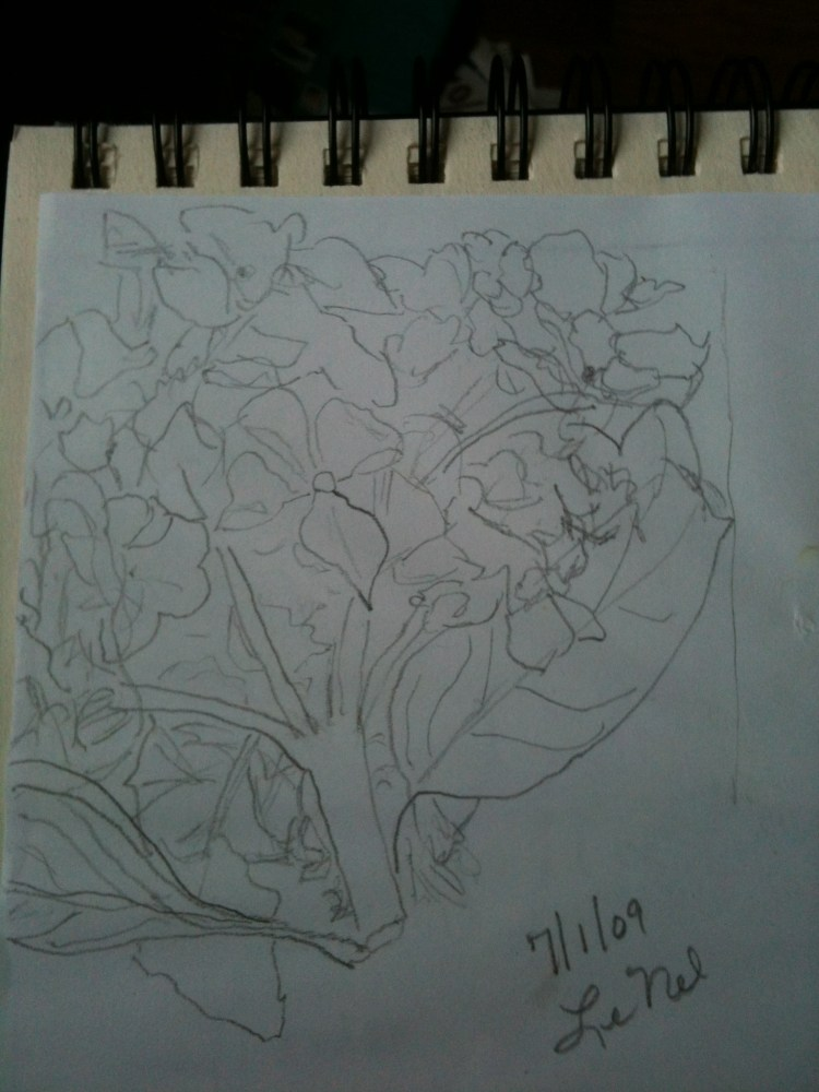My first drawings (1/3)