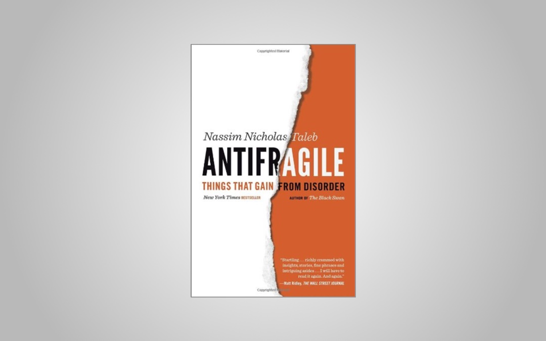 """Why Uncertainty is Good For You: Language Learning Lessons from """"Antifragile"""""""
