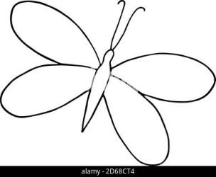 Butterfly in nature icon Simple illustration of butterfly in nature vector icon for web Stock Vector Image & Art Alamy