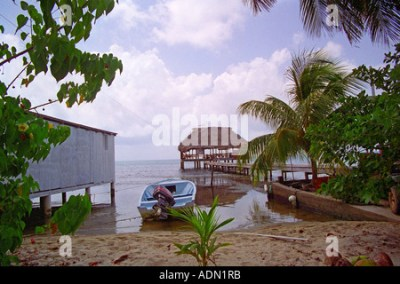 Palm Trees A Boat and Wooden Thatched Roof Cabana Huts on ...