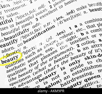 Definition word meaning in dictionary book Stock Photo