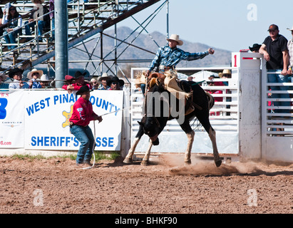 Rodeo Cowboy Bareback Riding Event Stock Photo 236220158