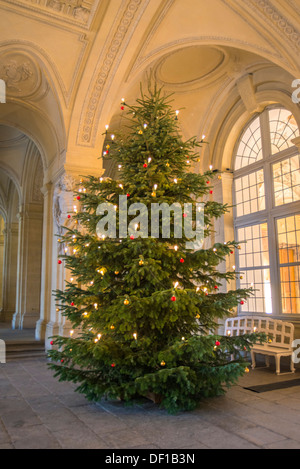 Christmas Tree In Entrance Hall With Early 20th Century