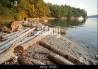 logs on beach, Tent Island, Gulf Islands, British Columbia ...