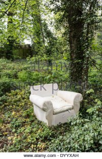 An old chair abandoned chair in the woods Stock Photo ...