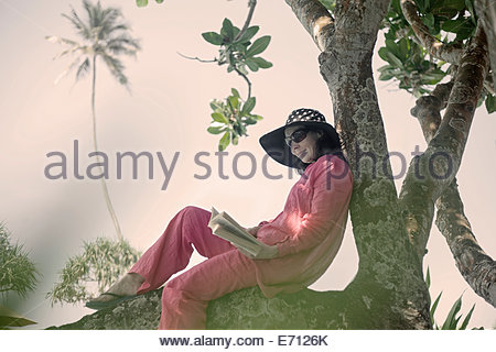 swing chair sri lanka white wedding chairs for bride and groom lankan woman sitting on an asian elephant in festival attire stock photo, royalty free ...