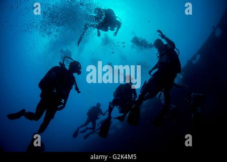 US Navy Explosive Ordnance Disposal diver and a sailor from the Royal Stock Photo Royalty Free
