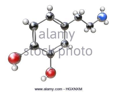hydrogen oxygen carbon and nitrogen atom Stock Photo